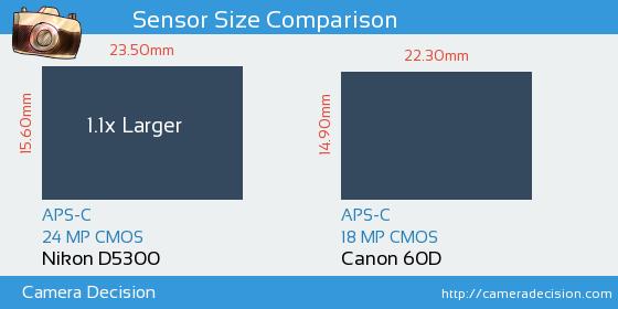 Nikon D5300 vs Canon 60D Sensor Size Comparison