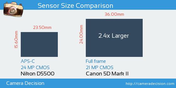 Nikon D5500 vs Canon 5D MII Sensor Size Comparison