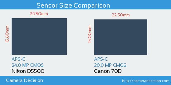 Nikon D5500 vs Canon 70D Sensor Size Comparison