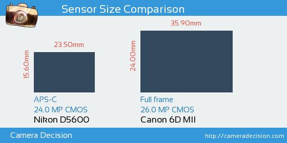 Nikon D5600 vs Canon 6D MII Sensor Size Comparison
