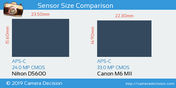 Nikon D5600 vs Canon M6 MII Sensor Size Comparison