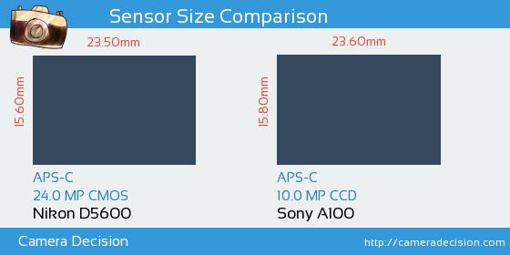 Nikon D5600 vs Sony A100 Sensor Size Comparison