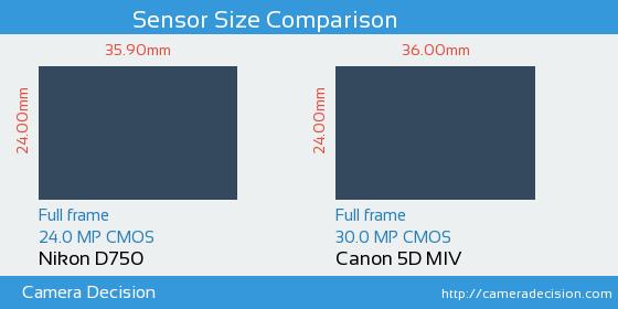 Nikon D750 vs Canon 5D MIV Sensor Size Comparison