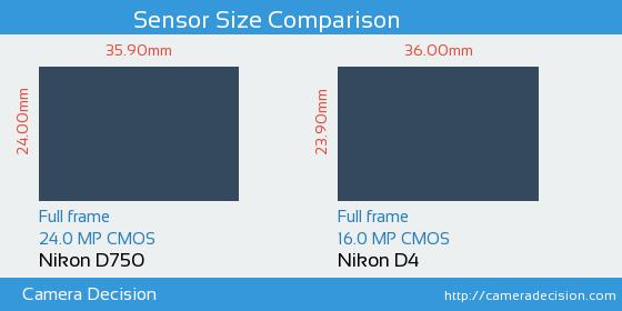 Nikon D750 vs Nikon D4 Sensor Size Comparison
