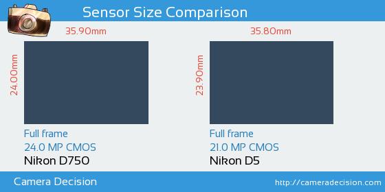 Nikon D750 vs Nikon D5 Sensor Size Comparison