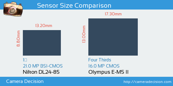 Nikon DL24-85 vs Olympus E-M5 II Sensor Size Comparison