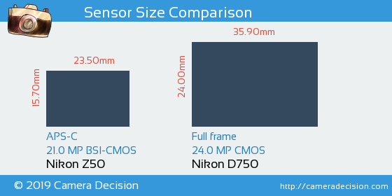 Nikon Z50 vs Nikon D750 Sensor Size Comparison