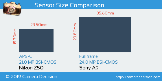 Nikon Z50 vs Sony A9 Sensor Size Comparison