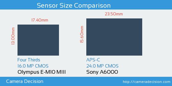 Olympus E-M10 MIII vs Sony A6000 Sensor Size Comparison