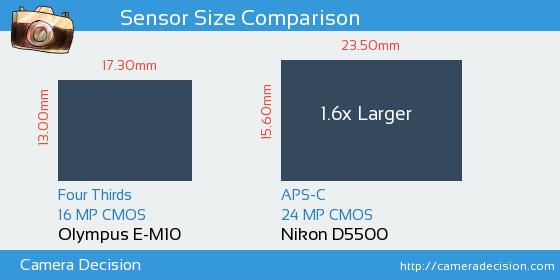 Olympus E-M10 vs Nikon D5500 Sensor Size Comparison