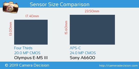 Olympus E-M5 III vs Sony A6600 Sensor Size Comparison