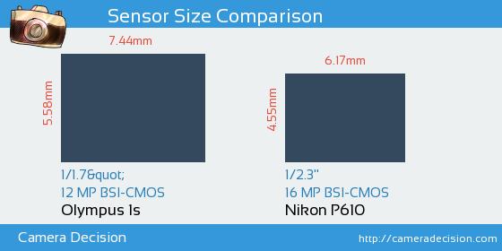 Olympus 1s vs Nikon P610 Sensor Size Comparison