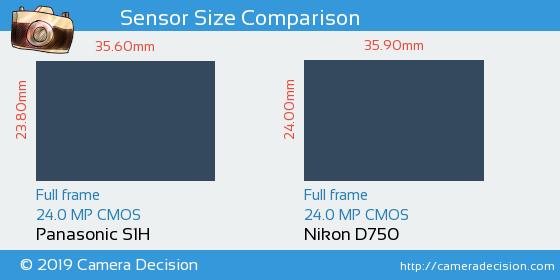 Panasonic S1H vs Nikon D750 Sensor Size Comparison