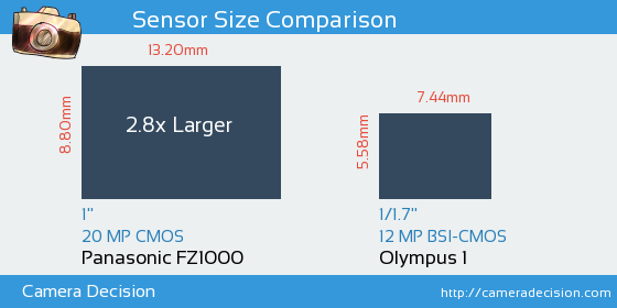 Panasonic FZ1000 vs Olympus 1 Sensor Size Comparison