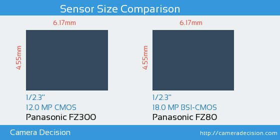 Panasonic FZ300 vs Panasonic FZ80 Sensor Size Comparison