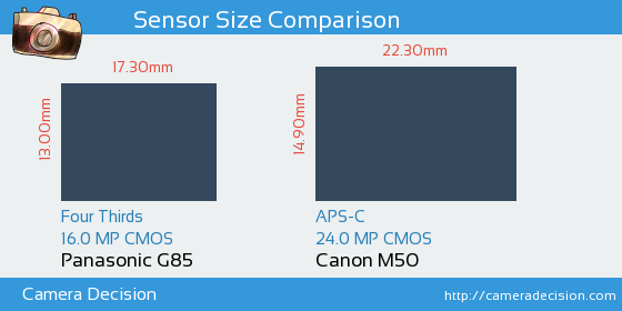 Panasonic G85 vs Canon M50 Sensor Size Comparison