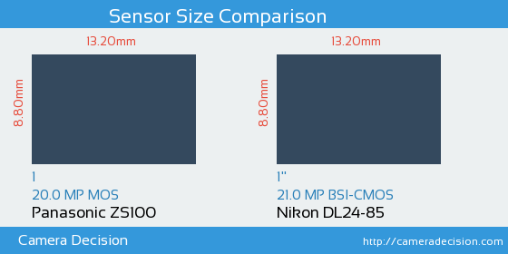 Panasonic ZS100 vs Nikon DL24-85 Sensor Size Comparison