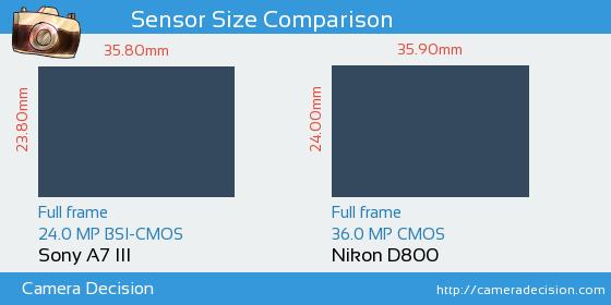 Sony A7 III vs Nikon D800 Sensor Size Comparison