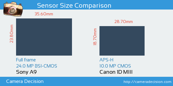 Sony A9 vs Canon 1D MIII Sensor Size Comparison