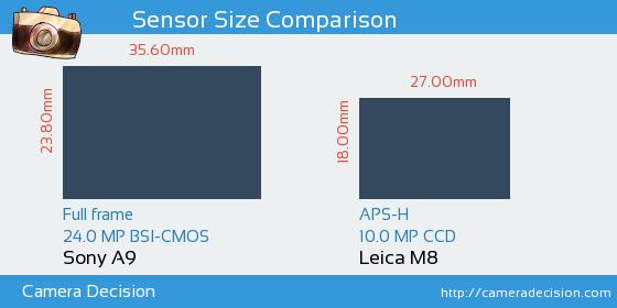 Sony A9 vs Leica M8 Sensor Size Comparison