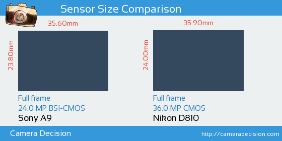 Sony A9 vs Nikon D810 Sensor Size Comparison