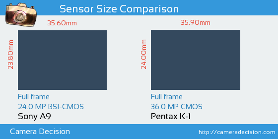 Sony A9 vs Pentax K-1 Sensor Size Comparison