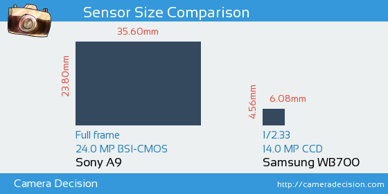 Sony A9 vs Samsung WB700 Sensor Size Comparison