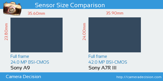 Sony A9 vs Sony A7R III Sensor Size Comparison