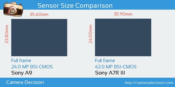 Sony A9 vs Sony A7R III Sensor Size Comparison