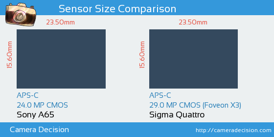 Sony A65 vs Sigma Quattro Sensor Size Comparison