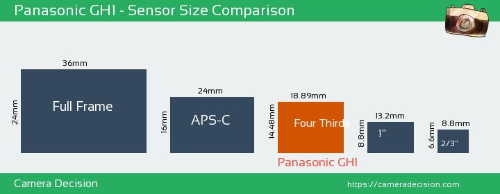 Panasonic GH1 Sensor Size Comparison