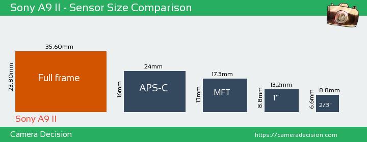 Sony A9 II Sensor Size Comparison
