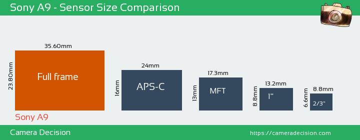 Sony A9 Sensor Size Comparison