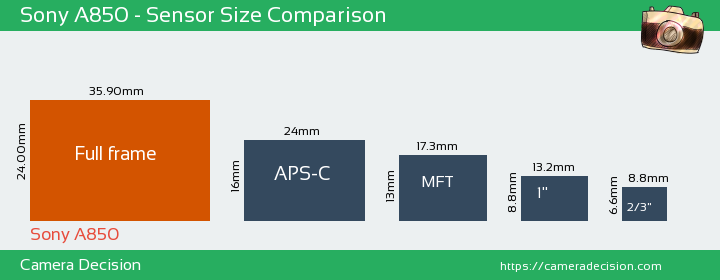Sony A850 Sensor Size Comparison