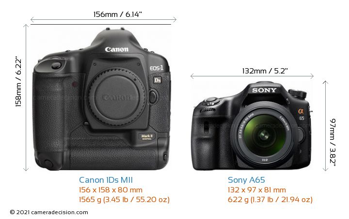 Canon 1Ds MII vs Sony A65 Camera Size Comparison - Front View