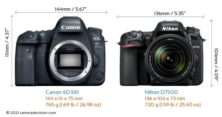 Canon 6D MII vs Nikon D7500 Camera Size Comparison - Front View
