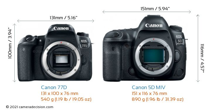 Canon 77D vs Canon 5D MIV Camera Size Comparison - Front View