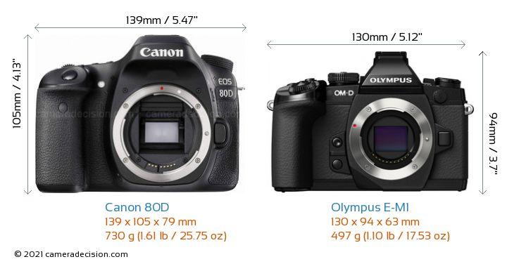 Canon 80D vs Olympus E-M1 Camera Size Comparison - Front View