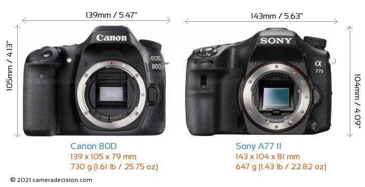 Canon 80D vs Sony A77 II Camera Size Comparison - Front View