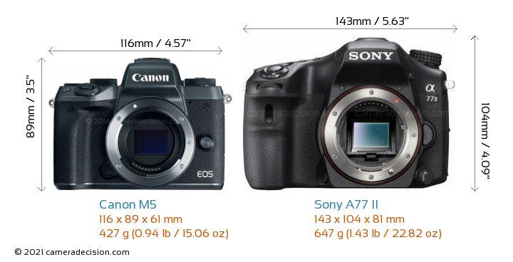 Canon M5 vs Sony A77 II Camera Size Comparison - Front View