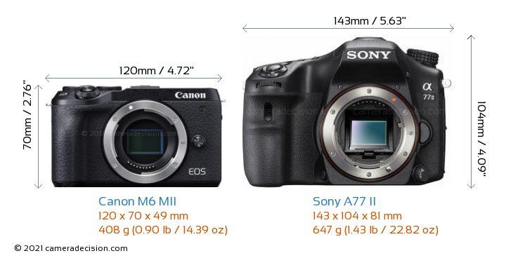 Canon M6 MII vs Sony A77 II Camera Size Comparison - Front View