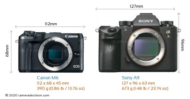 Canon M6 vs Sony A9 Camera Size Comparison - Front View
