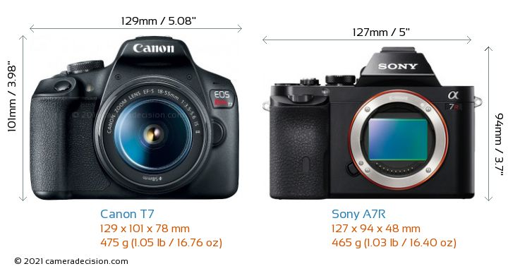 Canon T7 vs Sony A7R Camera Size Comparison - Front View