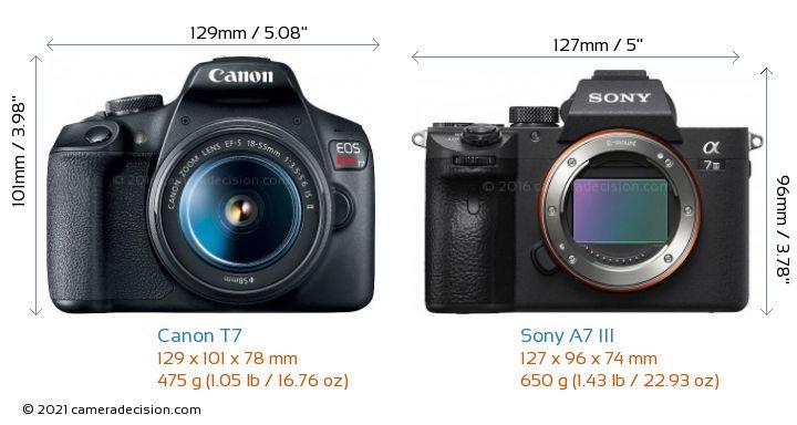 Canon T7 vs Sony A7 III Camera Size Comparison - Front View