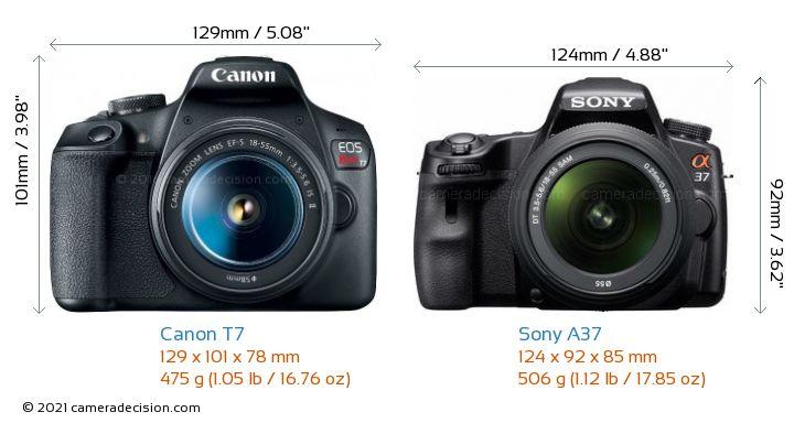 Canon T7 vs Sony A37 Camera Size Comparison - Front View