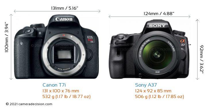 Canon T7i vs Sony A37 Camera Size Comparison - Front View
