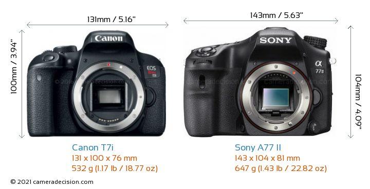 Canon T7i vs Sony A77 II Camera Size Comparison - Front View