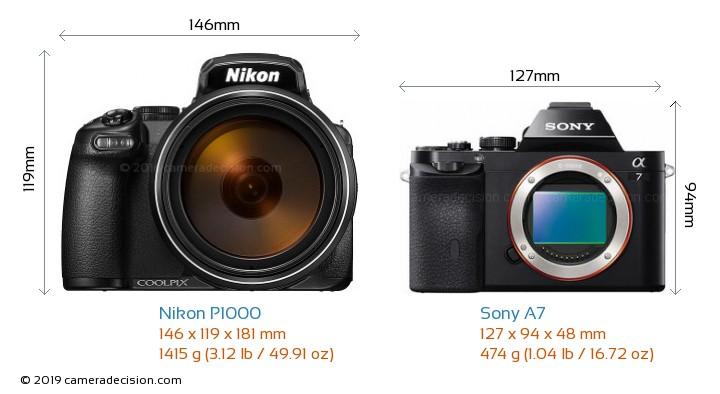 Nikon P1000 vs Sony A7 Camera Size Comparison - Front View