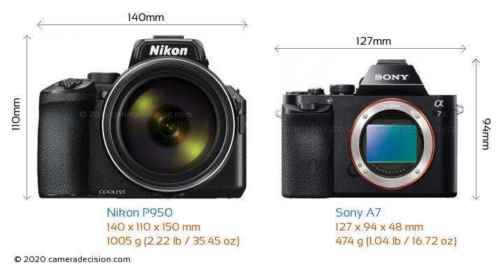 Nikon P950 vs Sony A7 Camera Size Comparison - Front View