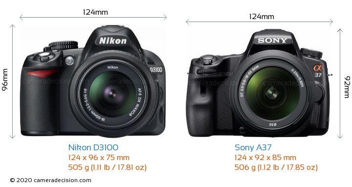 Nikon D3100 vs Sony A37 Camera Size Comparison - Front View